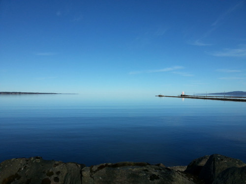 lesare-kjellqvist_150327a