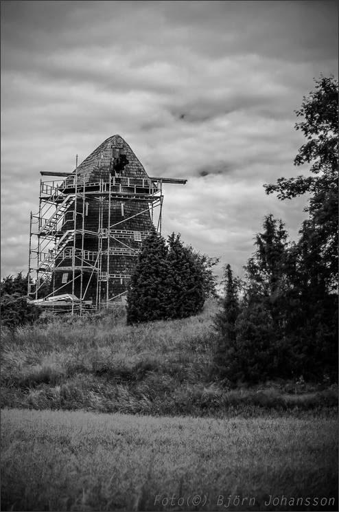 lesare-johansson_150209c