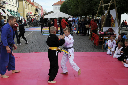 kampsport150919