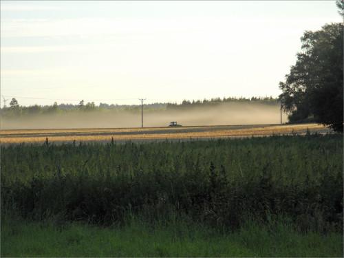 redaktegen-augustibild