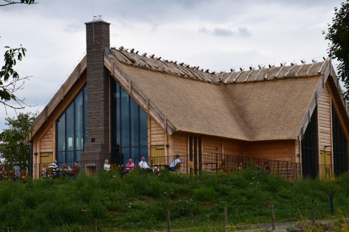 hornborgasjön1707