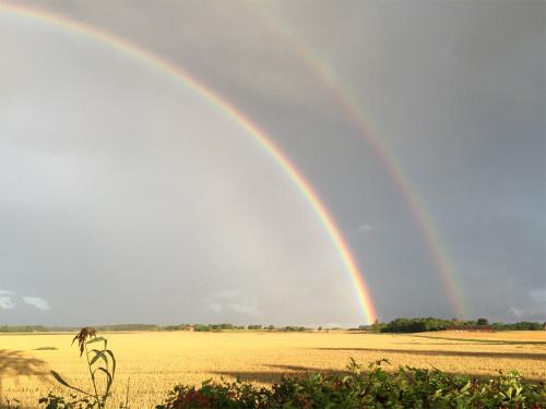 regnbåge-vaderbild170822