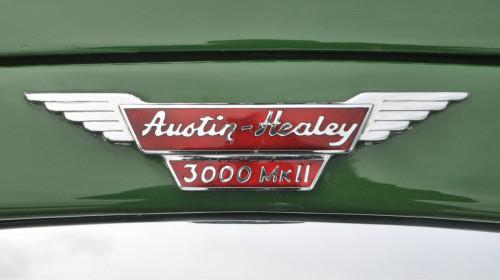 motortorsdag-2018-austin-healey