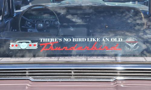 pbm-180706-bird