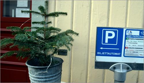 p-julskyltning