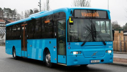nybuss